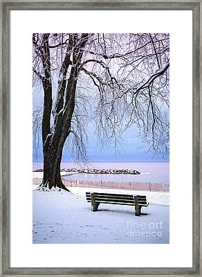 Winter Park In Toronto Framed Print by Elena Elisseeva