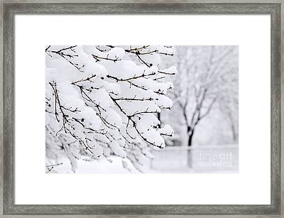 Winter Park Under Heavy Snow Framed Print by Elena Elisseeva