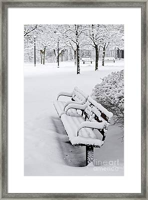 Winter Park With Benches Framed Print by Elena Elisseeva