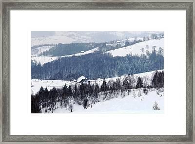 Winter Picture I Framed Print by Nedelcu Valeriu