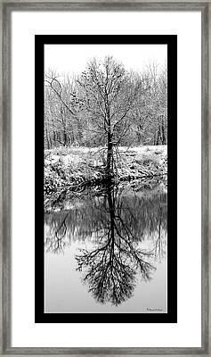 Winter Reflections 3 Framed Print by David Lester