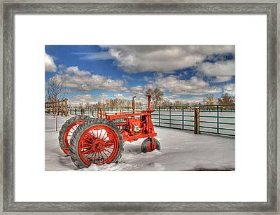 Winter Repose Framed Print by Donna Kennedy
