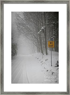 Winter Road During Snowfall I Framed Print by Elena Elisseeva