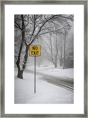 Winter Road During Snowfall II Framed Print by Elena Elisseeva