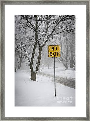 Winter Road During Snowfall IIi Framed Print by Elena Elisseeva