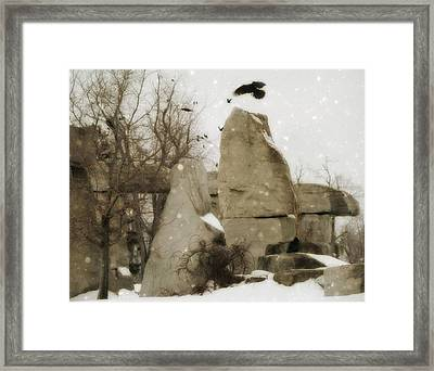 Winter Rocks Framed Print by Gothicolors Donna Snyder