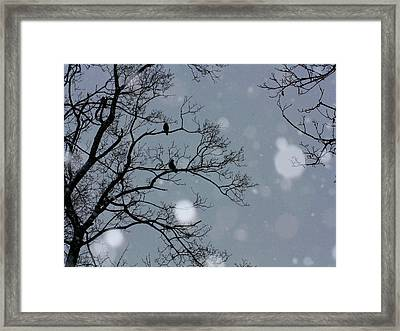 Winter Sky Framed Print by Gothicolors Donna Snyder