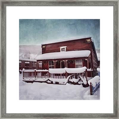 Winter Sleep Framed Print by Priska Wettstein