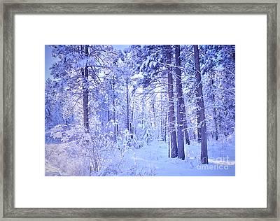 Winter Solace Framed Print by Tara Turner