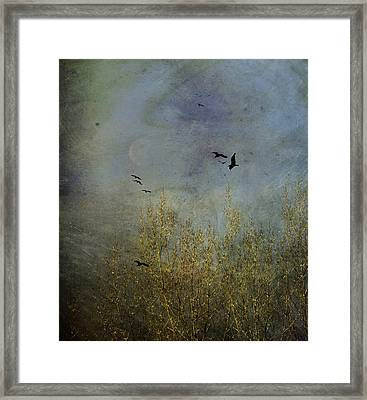 Winter Song Framed Print by Diane Schuster