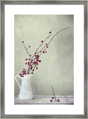 Winter Still Life Framed Print by Priska Wettstein