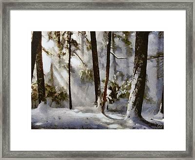 Winter Sun Framed Print by Gun Legler