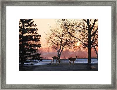 Winter Sunrise Greeting Framed Print by Doug Kreuger