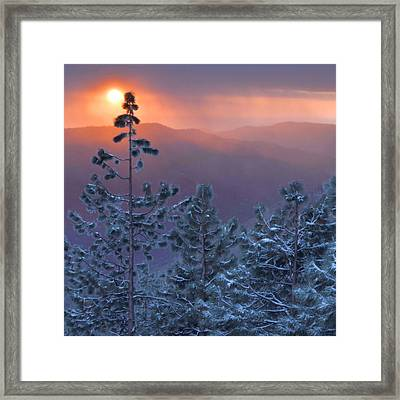 Winter Sunset - Kings Canyon Framed Print by Stephen  Vecchiotti
