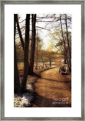 Winter Sunshine Framed Print by Julie Palencia