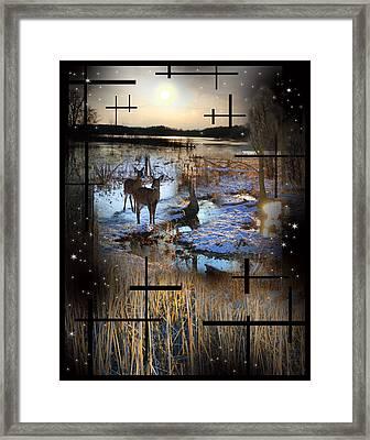 Winter Swamp Evening Framed Print by Andrew Sliwinski