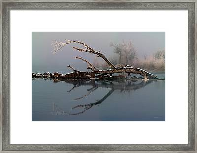 Winter Textures Framed Print by Leland D Howard