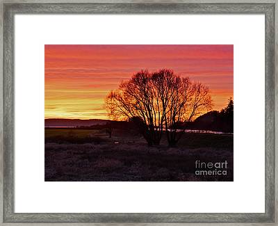 Winter Tree With Red Sky Framed Print by Valerie Garner