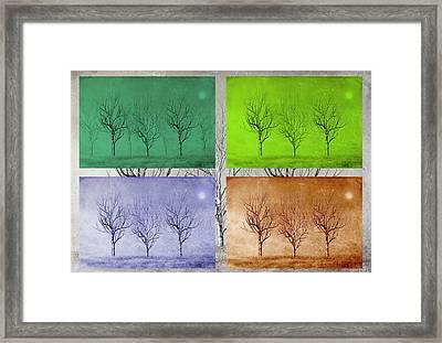 Winter Trees  Framed Print by David Dehner