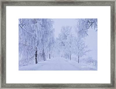 Winter Framed Print by Veikko Suikkanen