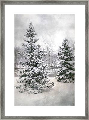 Winter White 2 Framed Print by Julie Palencia