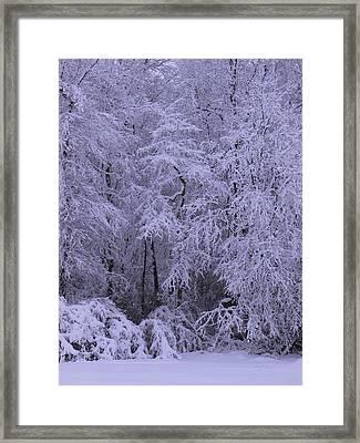 Winter Wonderland 1 Framed Print by Mike McGlothlen