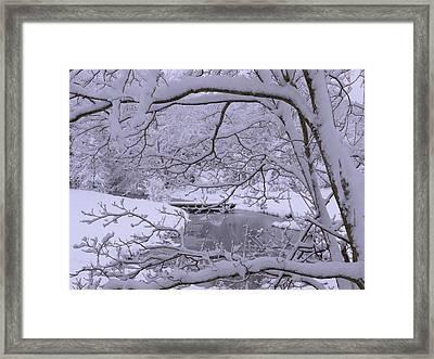 Winter Wonderland 2 Framed Print by Mike McGlothlen