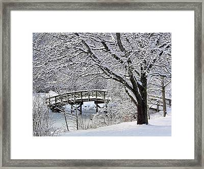 Winter Wonderland Framed Print by Janice Drew