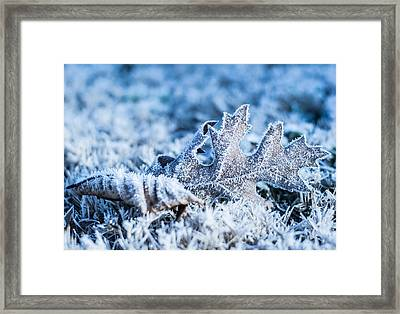 Winter's Icy Grip Framed Print by Parker Cunningham
