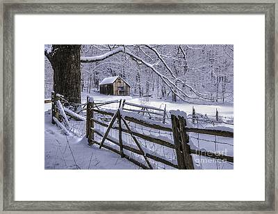 Winter's Mystique   Framed Print by Thomas Schoeller