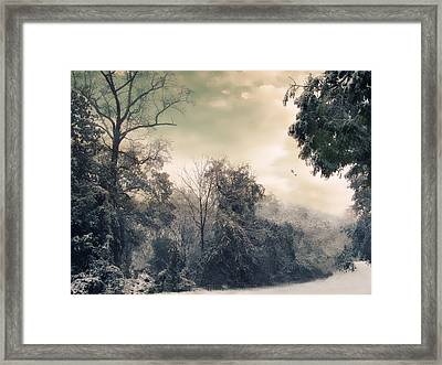Winter's Tones Framed Print by Jessica Jenney