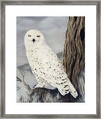 Winterwise Framed Print by Rick Bainbridge