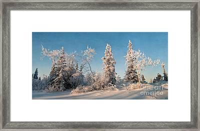 Wintery Framed Print by Priska Wettstein