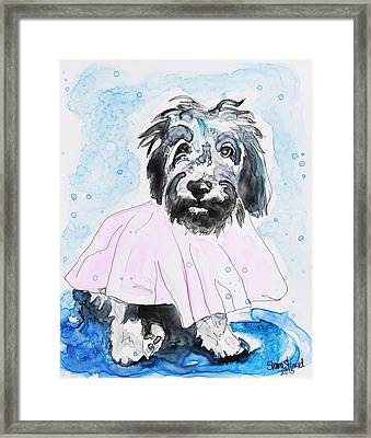 Wipe Your Paws Framed Print by Shaina Stinard