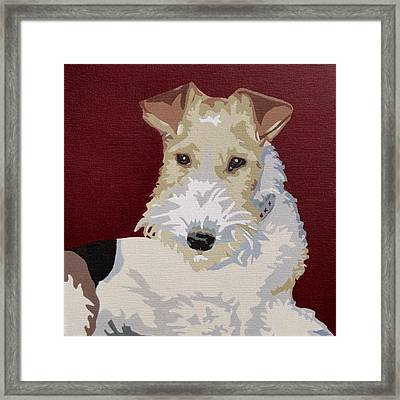 Wirehaired Fox Terrier Framed Print by Slade Roberts