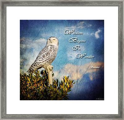 Wisdom Begins In Wonder Framed Print by Jordan Blackstone