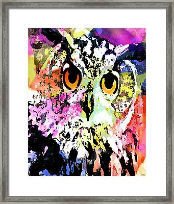 Wise And Colorful Owl Framed Print by Catherine Harms