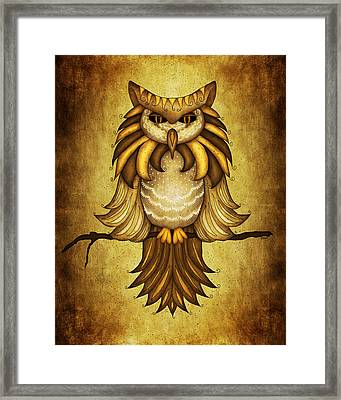 Wise Owl Framed Print by Brenda Bryant