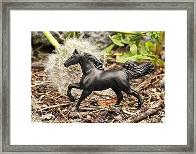 Wishing Horse Framed Print by Jeff  Gettis