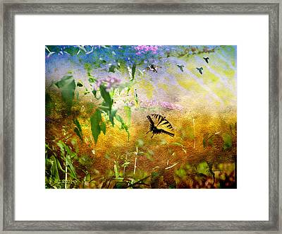 Wishing To Soar Like A Birds-featured In Comfortable Art-newbie-nature Wildlife Groups Framed Print by EricaMaxine  Price