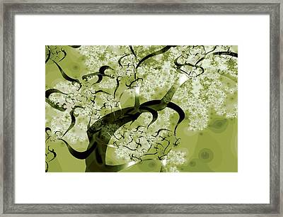 Wishing Tree Framed Print by Anastasiya Malakhova