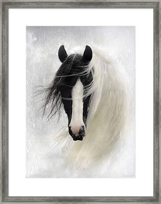 Wisteria  Framed Print by Fran J Scott