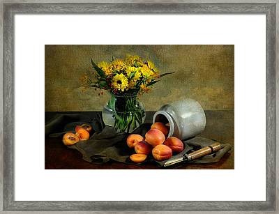 With Apricots Framed Print by Diana Angstadt
