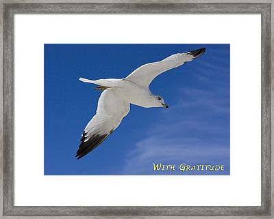 With Gratitude Framed Print by Dawn Currie