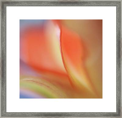 With Love Framed Print by Annie  Snel