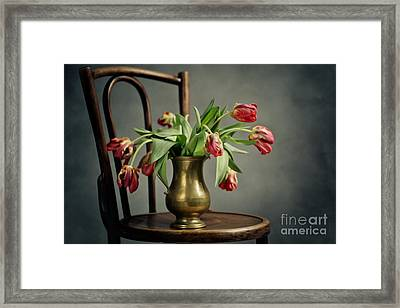Withered Tulips Framed Print by Nailia Schwarz