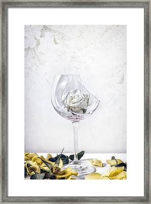 Withered White Rose Framed Print by Joana Kruse