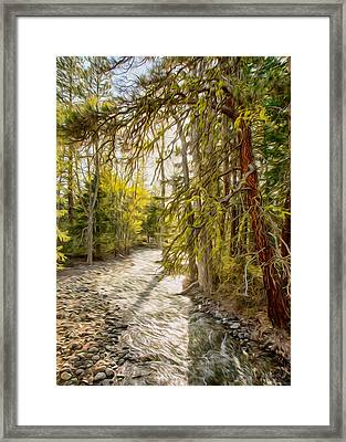 Wolf Creek Afternoon Light Framed Print by Omaste Witkowski