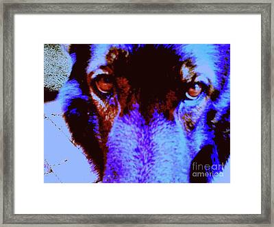 Wolf Eyes Framed Print by Nina Kaye