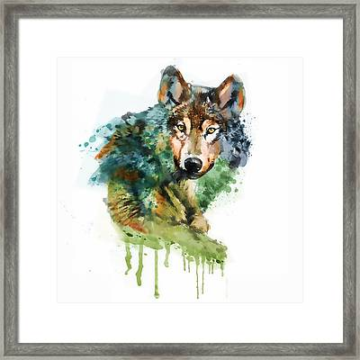 Wolf Face Watercolor Framed Print by Marian Voicu